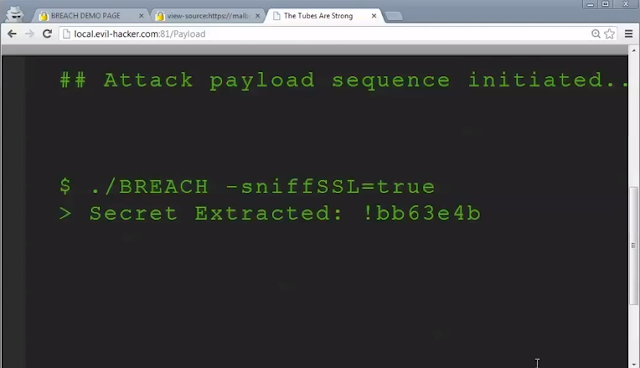 BREACH decodes HTTPS encrypted data in 30 seconds