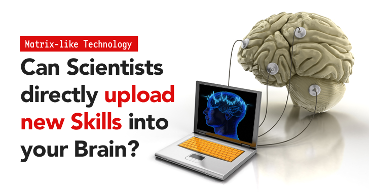 Can Scientists 'Upload Knowledge' Directly into your Brain to Teach New Skills?