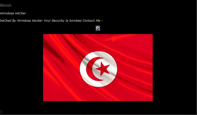 Israeliens Websites Hacked By Ahmdosa !