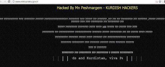 Turkish government website Hacked by kurdish hacker for bombarding Kurdistan Regions